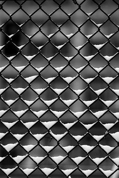 Black & White Photography Inspiration Picture Description Fence and Snow by Neil Johnson Black N White, Black White Photos, Black And White Photography, White Art, Snow White, Pattern Photography, Art Photography, Texture Photography, Symmetry Photography