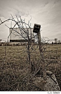 An old Drive-In theater called the Hill-Top in Joliet, IL. We loved going here. Joliet Illinois, Drive In Movie Theater, Outdoor Theater, Horror Show, Architecture Old, About Time Movie, Life Moments, Ghost Towns, Places
