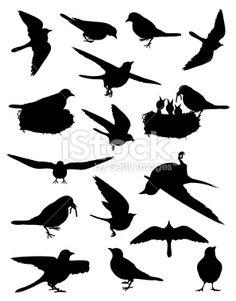 Birds of Spring Royalty Free Stock Vector Art Illustration