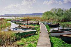 Lake Balaton cycling route. Photo: 'Lake Balaton Hungary' by glen edelson. CC SA 2.0