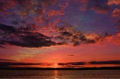 Good Morning and Happy Friday!  Photo taken at Lake Sam Rayburn in Jasper County Texas by @jenn_dunkin.