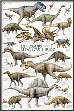 Stars and Dinosaurs Store — Absolutely Prehistoric | Stars and Dinosaurs | Space and Prehistoric Gifts: Dinosaurs - Cretaceous Period $79.99