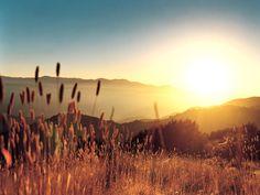 Summer sunset<3
