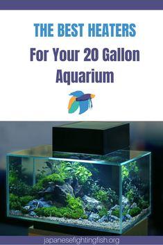 101 Best Aquarium Filter Images Pond Filters Aquarium Pond
