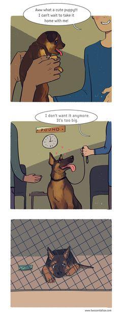 Thinking through responsible pet ownership.