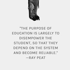 Quote from a Ray Peat interview featured in the much anticipated documentary On The Back Of A Tiger.  Ray Peat is a huge proponent of self-driven learning. A teachers role should be to facilitate learning by helping pupils find the answers to their own questions and not by dictating to them what should be learned.  Studies show that students who are the most academically successful are often not the most intelligent students. Beyond a certain point intelligence can result in lower school…