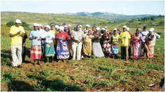 """Scopri cos'è """"Operazione Namaacha"""" e con una donazione di almeno 50 euro riceverai il ricettario dei preparati di agricoltura organica!"""