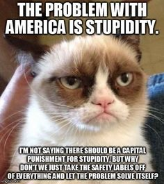 Problem with America is Stupidity.