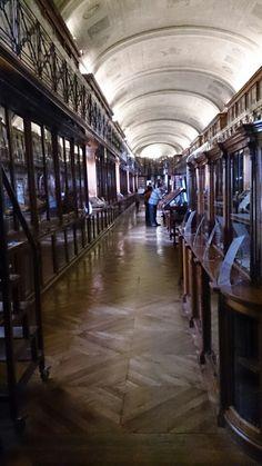 Biblioteca Reale in Torino, Piemonte