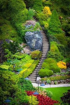 Butchart Gardens Stairs in Vancouver, BC, Canada.I remember being there! Pathway in Butchart Botanical Gardens in Vancouver, BC, Canada Beautiful Landscapes, Beautiful Gardens, Amazing Gardens, The Places Youll Go, Places To Go, Magic Garden, Garden Stairs, Garden Bridge, Sunken Garden