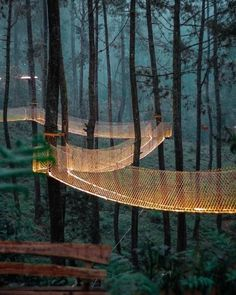 Orchid Forest, Bandung Indonesia - Mongolian Outdoor Travel - Mongolian tailor made trip Beautiful Places To Travel, Cool Places To Visit, Landscape Architecture, Landscape Design, Sketch Architecture, Green Landscape, Forest Resort, Cool Tree Houses, Beautiful Tree Houses