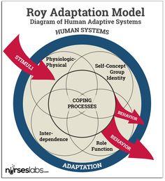 Diagrammatic Representation of Roy's Human Adaptive Systems. College Nursing, Nursing School Notes, Nursing Philosophy, Community Psychology, Nursing Theory, History Of Nursing, Nurse Betty, Professional Nurse