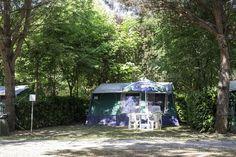 Tent on campsite Photos Tent on campsite between the trees. Sun light by Deyan Georgiev