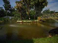 Parque do Sabiá, Uberlandia MG, Brasil