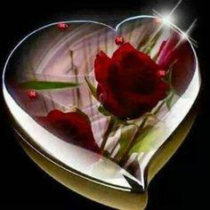 sydämet Dating Service eHarmony Dating neuvoja foorumi