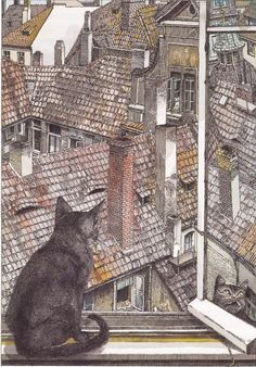 Klaus Ensikat Cat looking over rooftops