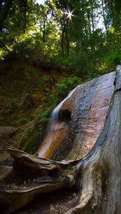 Golden Cascade-Berry Creek Falls-Big Basin Redwoods. Source Flickr.con