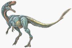 Dilong paradoxus - the feathered tyrannosaur dinosaur