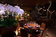 Asian Room - Novikov Restaurant---London.  Grant and I ate here twice in August. RWP