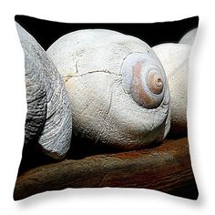 Moon Shells Throw Pillow by Micki Findlay - TheSingingPhotographer.com - various sizes, home decor, cushion, seashells, beach decor, nautical, coastal
