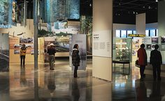Modular Exhibit & Display Systems, Museum Cases