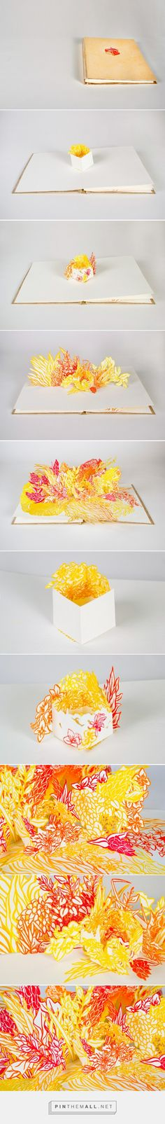 Cube Pop-Up Book on Behance