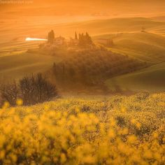 Heavenly beautiful Tuscany in first morning rays of sun. April photo workshop. Danielkordan.com #Tuscany #italy #valdorcia by danielkordan