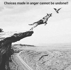 Positive Quotes : Choices made in anger cannot be undone. - Hall Of Quotes Wise Quotes, Quotable Quotes, Great Quotes, Funny Quotes, Inspirational Quotes, Daily Quotes, Motivational Quotes, Funny Memes, Jokes
