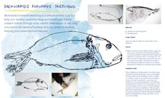 Drawing Projects for Children by Paula Briggs.                                           Gloucestershire Resource Centre http://www.grcltd.org/scrapstore/