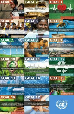 Professional: UNICEF is an organization I may work for one day, so these goals of providing global sustainability interest me.