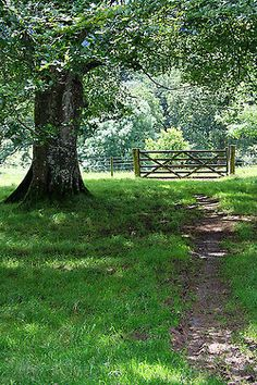 worldofgrania:  The Field Gate by Meldrewman on Flickr.