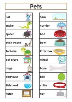 This packet includes a personal word list for the writing and word work center and large cards for the classroom wall. Kindergarten Language Arts, Kindergarten Themes, Vocabulary Word Walls, Vocabulary Games, Learning English For Kids, English Lessons For Kids, Preschool Charts, Preschool Activities, Classroom Word Wall