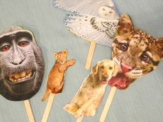 Have a magazine? Make a puppet show! Yes!  Use magazines pictures for each day of creation and tell the story!