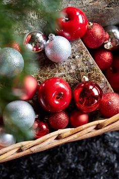 Christmas  Red  ambience , styliste Philippe de Stefano for  botanic