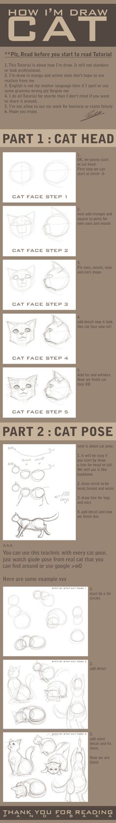 how I am draw cat by pandabaka on deviantART - these things help for a lot of things, take note and just leave it till you need it! - Picmia