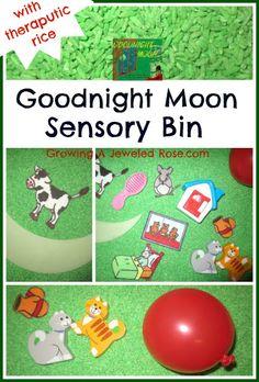 Goodnight Moon- early learning sensory bin
