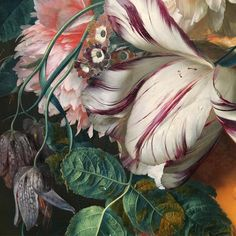 """A detail from """"A bouquet of flowers in an urn"""" (1724) by Jan van Huysum (Dutch, 1682 – 1749). One of the greatest flower painters to have lived, not just for his technical ability — I once had an expert jokingly tell me that under a microscope you could see amoebas swimming in the artists' droplets — but also because Huysum's still lives were often passion plays (e.g. A caterpillar could represent the mortal christ, and a butterfly the resurrection). #stilllife #janvanhuysum #dutchpainting"""