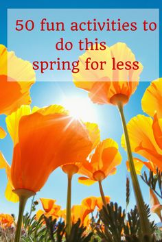 50 fun activities to do this  Spring for less