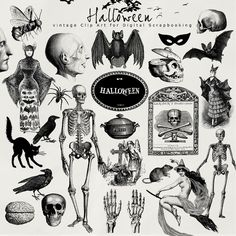 DIY - Free halloween printables (Source : http://farfarhill.blogspot.nl/2012/08/today-i-want-present-to-you-new-kit-of.html) # Halloween