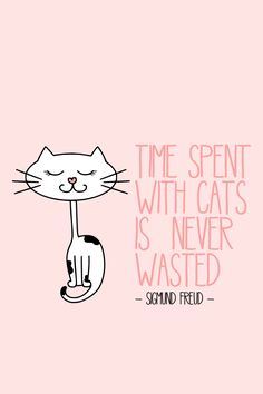 time with cats is never wasted