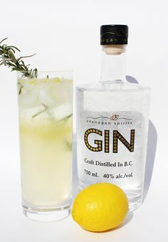 lemon & rosemary gin fizz: lemon juice, rosemary simple syrup, gin, club soda