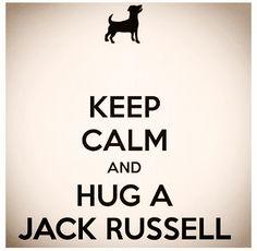 keep calm and hug a jack russell :)