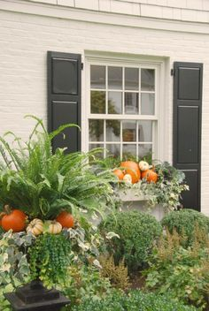 Dekoration Blumenkasten window box ideas for winter, window box ideas for shade, planting a window box ideas, bay window box ideas Fall Window Boxes, Window Box Flowers, Fall Flower Boxes, Flower Ideas, Autumn Garden, Autumn Home, Fall Containers, Succulent Containers, Container Flowers