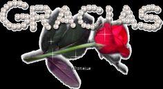 Gracias...Thank you -