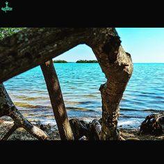 #nikonlife #miamiphotography #photographylife #Miamilife #DMStreetgeek #darqmatter #miamidade #dadecounty http://ift.tt/1UhmCuU