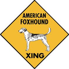 Check out our latest Exterior Aluminum Signs for Dogo Argentino Dog Signs Dogo Argentino Dog, Belgium Malinois, American Foxhound, Chinese Crested Dog, Hiking Dogs, The Fox And The Hound, Border Terrier, Dog Activities, Police Dogs