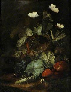 Your Paintings - Otto Marseus van Schrieck paintings