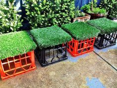 Astro Turf Grass Crate Seats More 118078821460487759 Milk Crate Furniture, Kids Furniture, Outdoor Furniture Sets, Outdoor Decor, Milk Crate Seats, Milk Crates, Outdoor Classroom, Classroom Decor, Astro Turf Grass