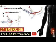 ♂️ #1 Exercise For Preventing Erectile Dysfunction & Improving Your Performance In The Bedroom - YouTube