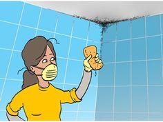 Schimmel verwijderen #livios #hoekanik #diy www.livios.be